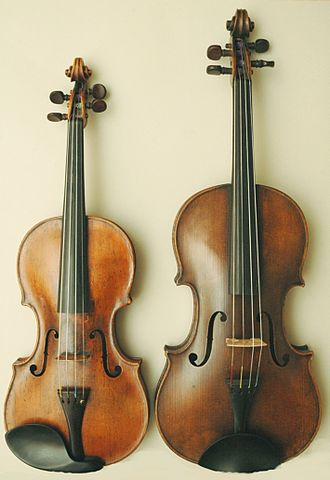 Differences Between the Violin and Viola